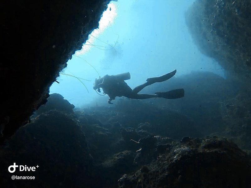 taken at 20m depth. tiger rock @panama d