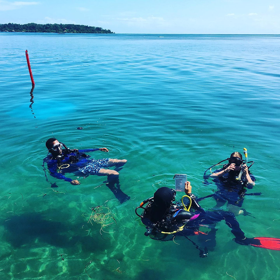 rescue diver course PDS.jpg
