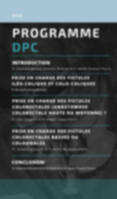 Programme DPC SFCD.png