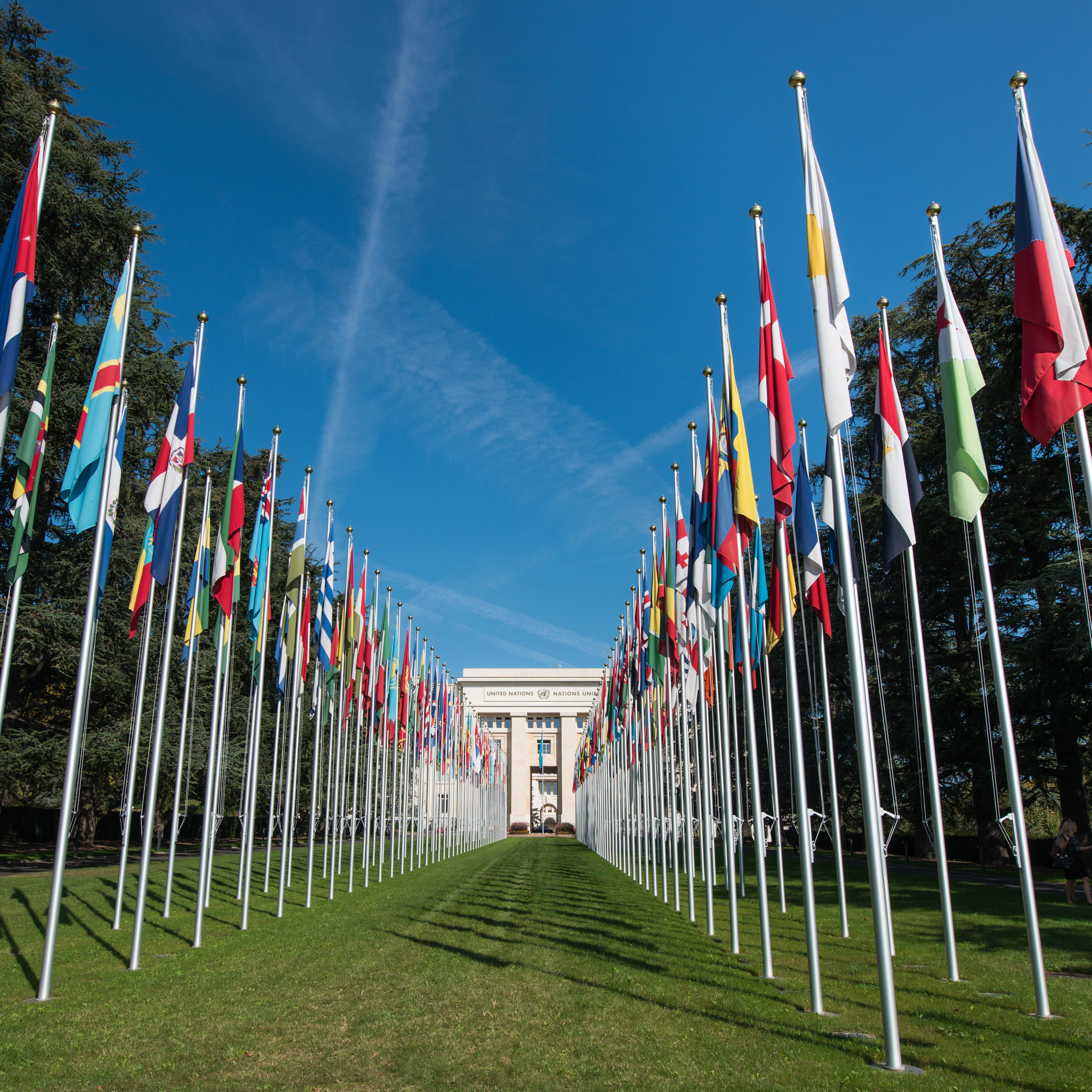 ONU - UN