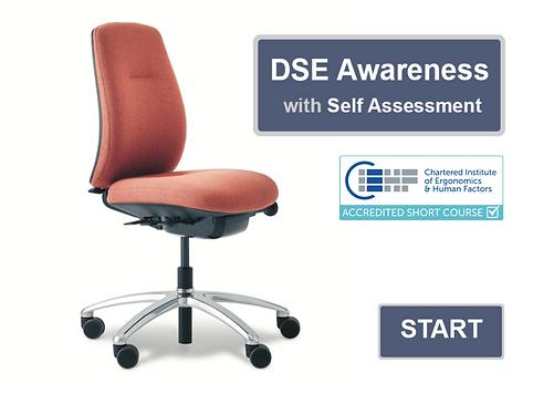 DSE Awareness SA title screen.png