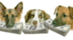Dog_Money.jpg