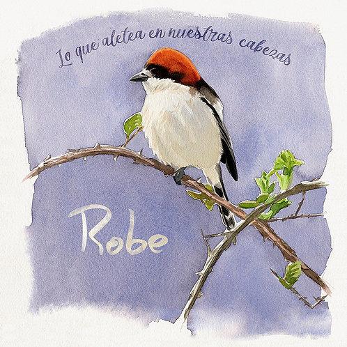 ROBE INIESTA LP+CD Lo Que Aletea En Nuestras Cabezas