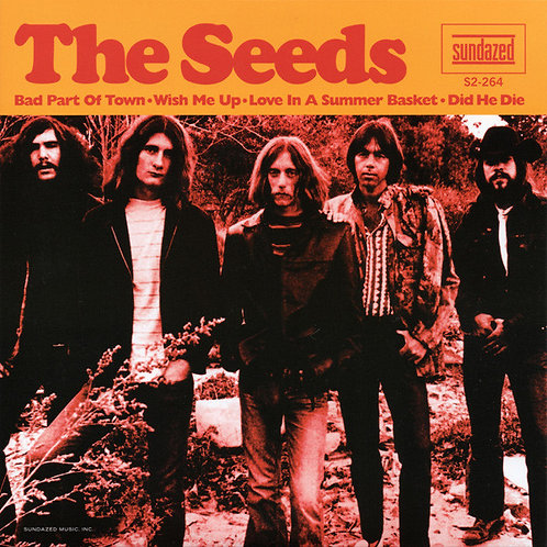 """THE SEEDS 2x7"""" Bad Part Of Town (Record Store Day Exclusive)"""