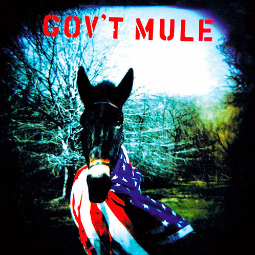 GOV'T MULE 2xLP Gov't Mule (Gatefold)