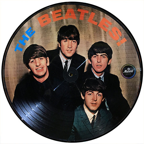 BEATLES LP Vol 2 (Picture Disc México)