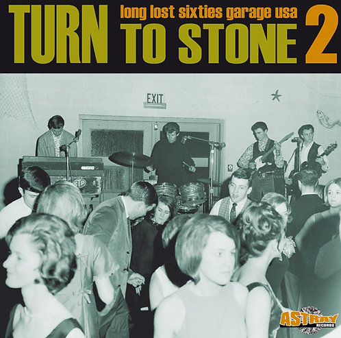 VARIOUS LP Turn To Stone 2 (Long Lost Sixties Garage USA)