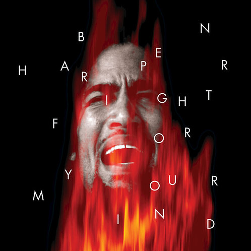 BEN HARPER CD Fight For Your Mind
