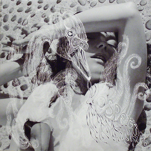 BJORK 2xLP Vespertine (180 Gram Heavyweight)