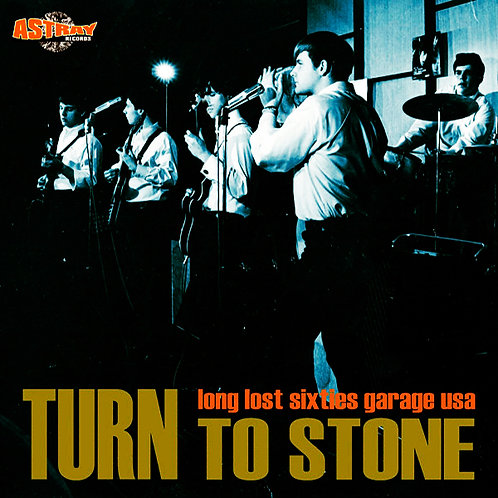 VARIOUS LP Turn To Stone (Long Lost Sixties Garage USA)