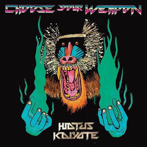 HIATUS KAIYOTE 2xLP Choose Your Weapon (180 gram audiophile vinyl)