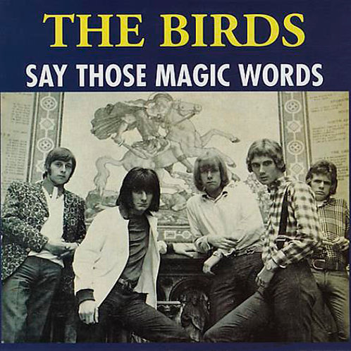 THE BIRDS LP Say Those Magic Words (Ron Wood)