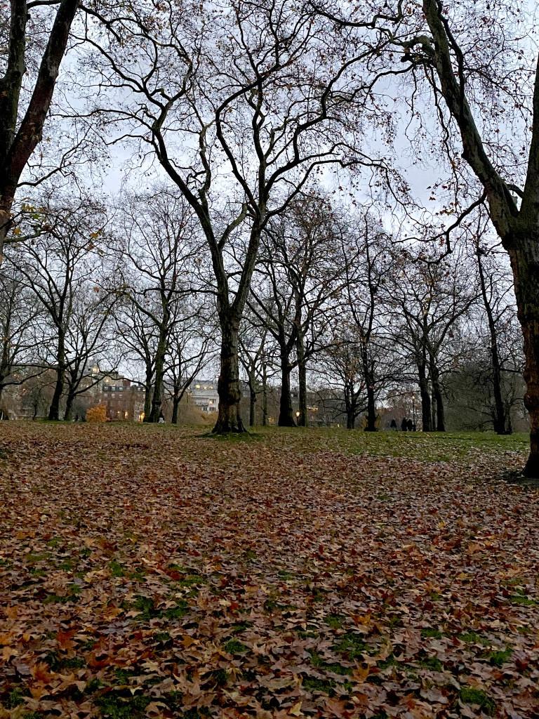 Green Park, London 2019
