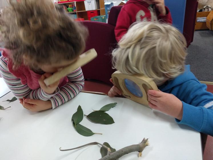 Investigating a caterpillar.jpg