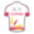 cofidis-solutions-credits.png