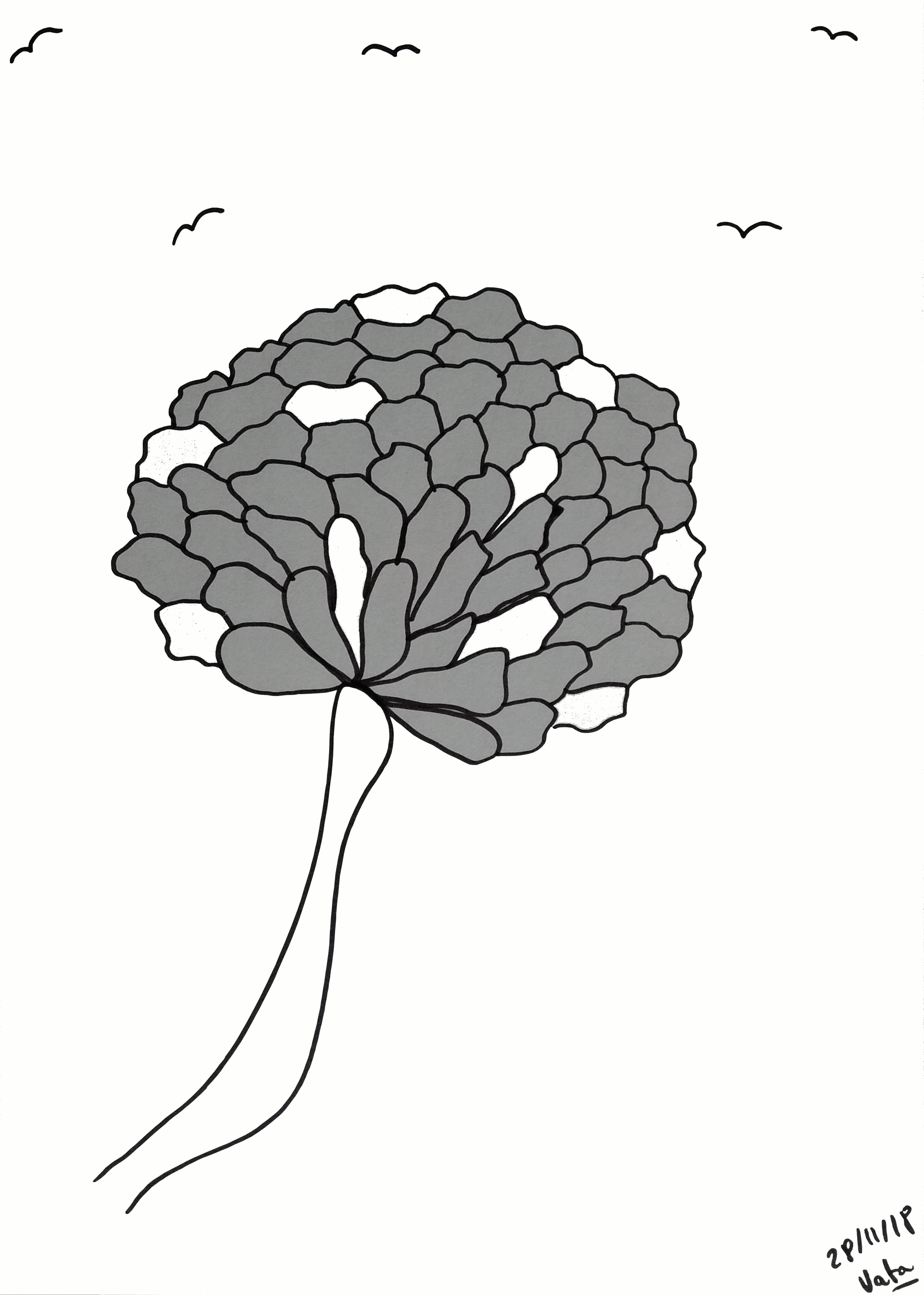 DESSIN papier fleur noir et blanc, Vata.