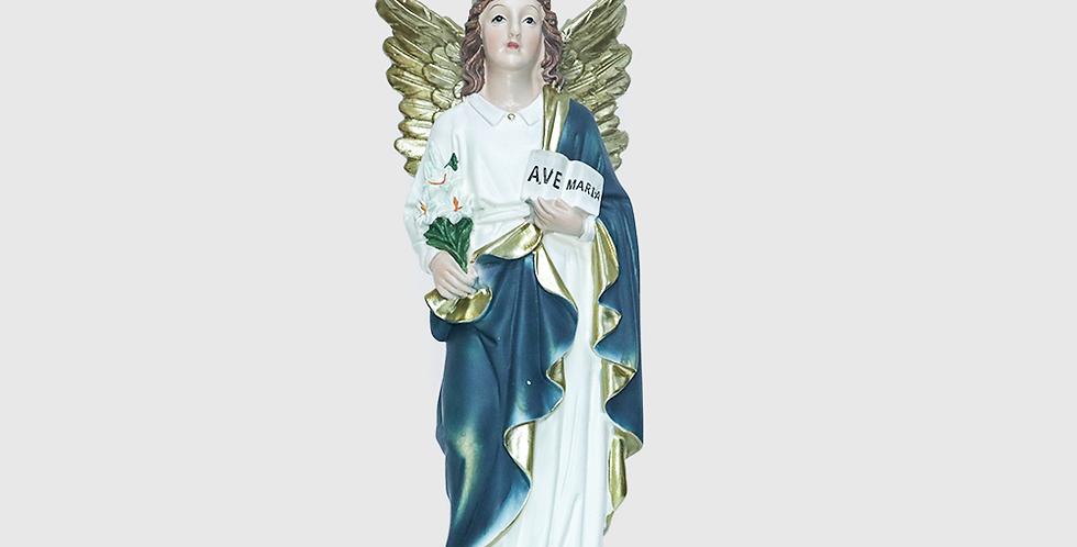 Imagem São Gabriel