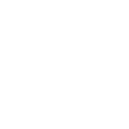logo-dynamus.png