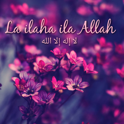 Allah has one solution for your every problem