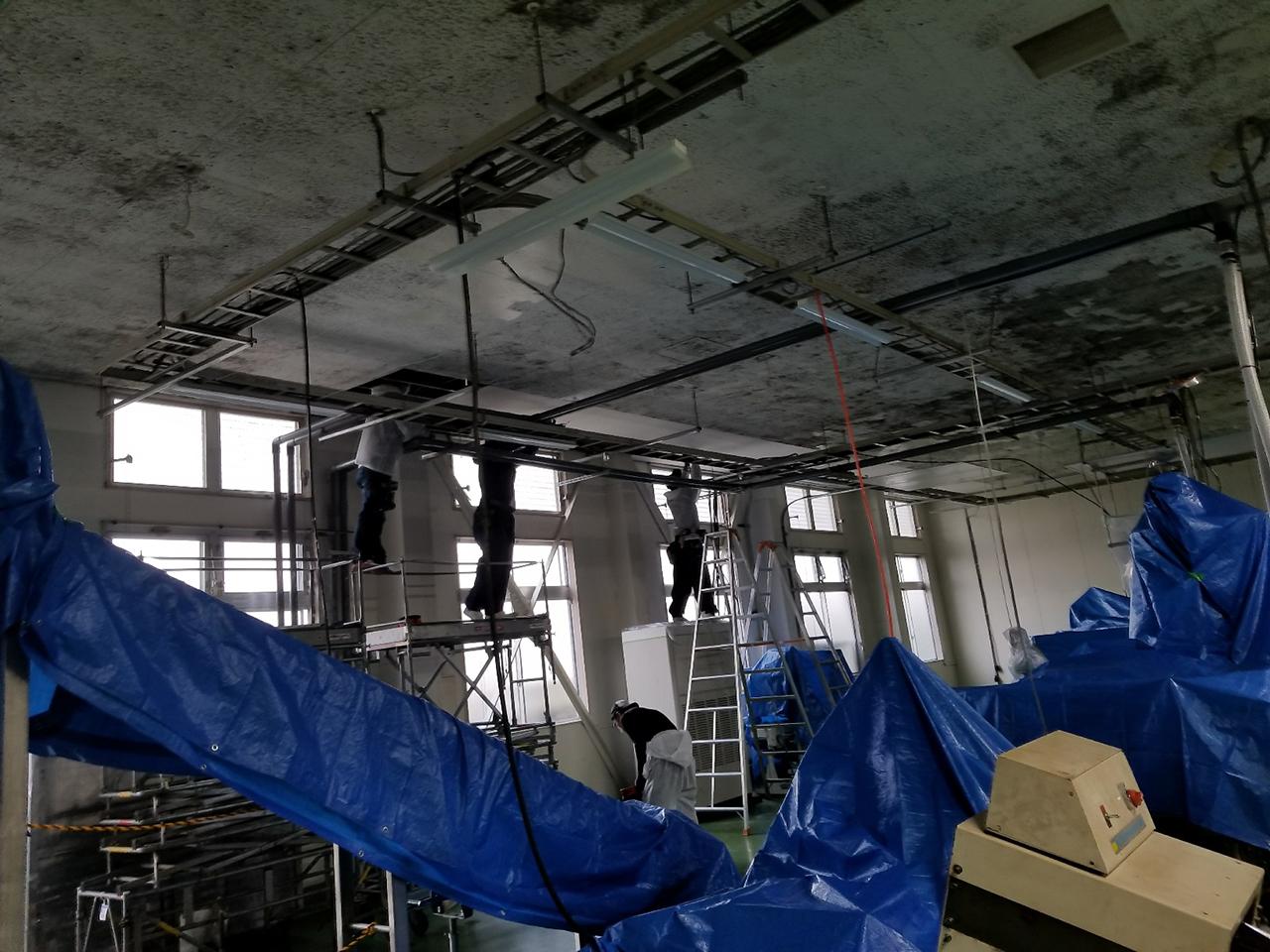 食品工場天井塗装工事