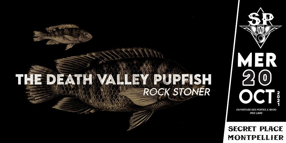 DEATH VALLEY PUPFISH