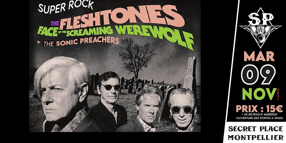 THE FLESHTONES + THE SONIC PREACHERS