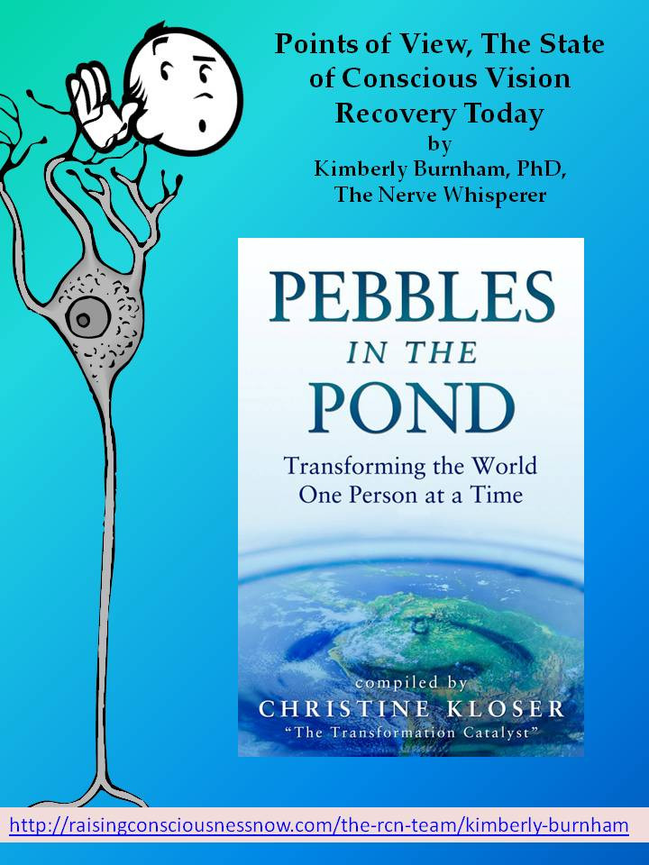 Pebblies in the Pond Book Cover