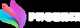 Phoenix_Logo_transparent-white_letters_s