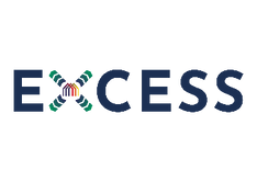 Excess_Logo_RGB_small.png