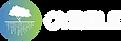 CYBELE-LOGO_COLOR-ON-DARK_HORIZONTAL.web