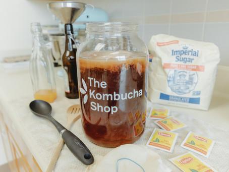 Beginner Kombucha Making Tips // How to make Kombucha (recipe)