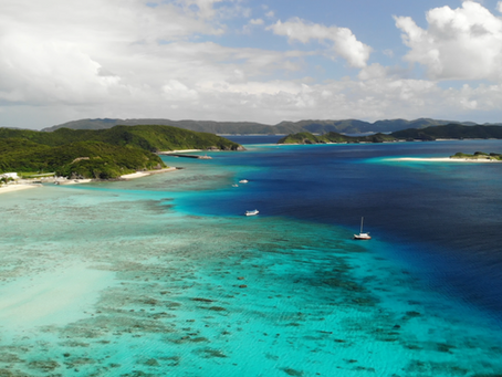 What to do on Zamami Island/How to spot sea turtles while snorkeling