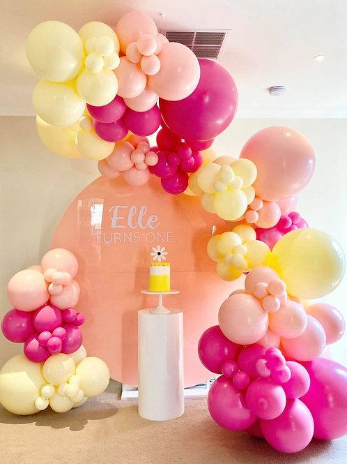 Round Pink Acrylic Backdrop