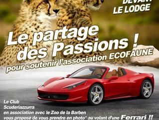Partenariat avec le Zoo de la Barben