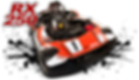 RX250