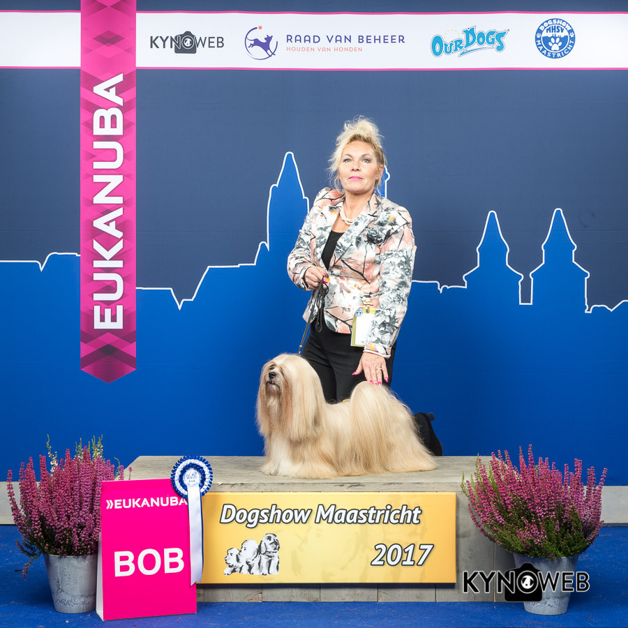 BEST_OF_BREED_-577_DOGSHOW_MAASTRICHT_20
