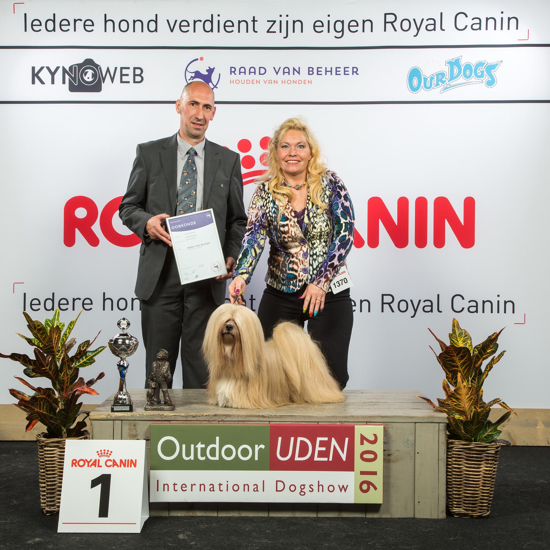 Best In Show Dogshow Uden