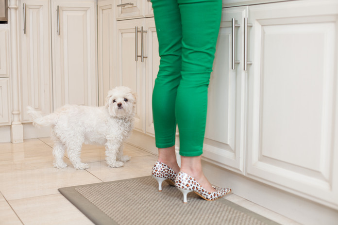Viky Rose Influencer Blogger Entrepreneur Photoshoot - With Her Dog