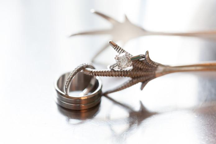 Diamond Rings - Jewelry Photography