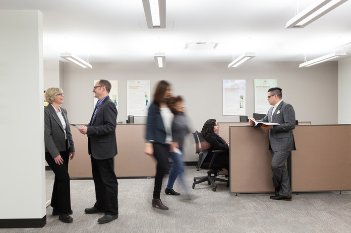 Law Commission of Ontario York University Employees in Action - Corporate Photography