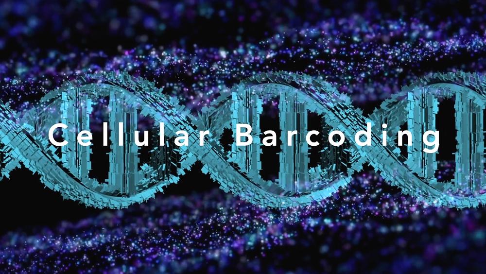 """Frame aus dem Musikvideo """"Cellular Barcoding"""""""