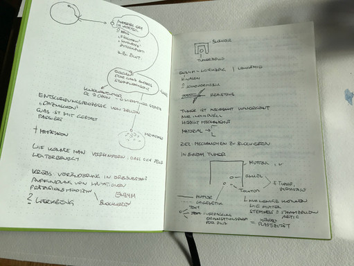Notes by Ruth Mateus-Berr
