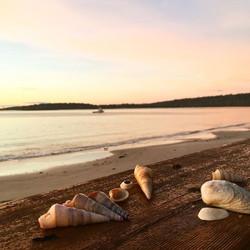 Kingfisher Beach, Southport Tasmania