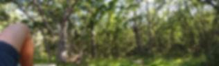 Vistas desde el CENEAM (Valsín)