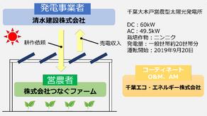 千葉エコ・つなぐファームと清水建設、共同でソーラーシェアリング事業を展開