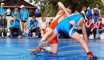 Всероссийские летние сельские спортивные игры
