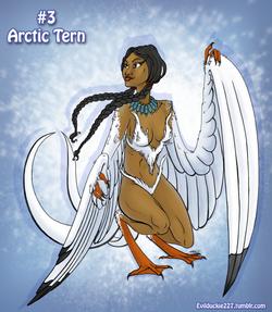 Arctic_Tern_Harpy