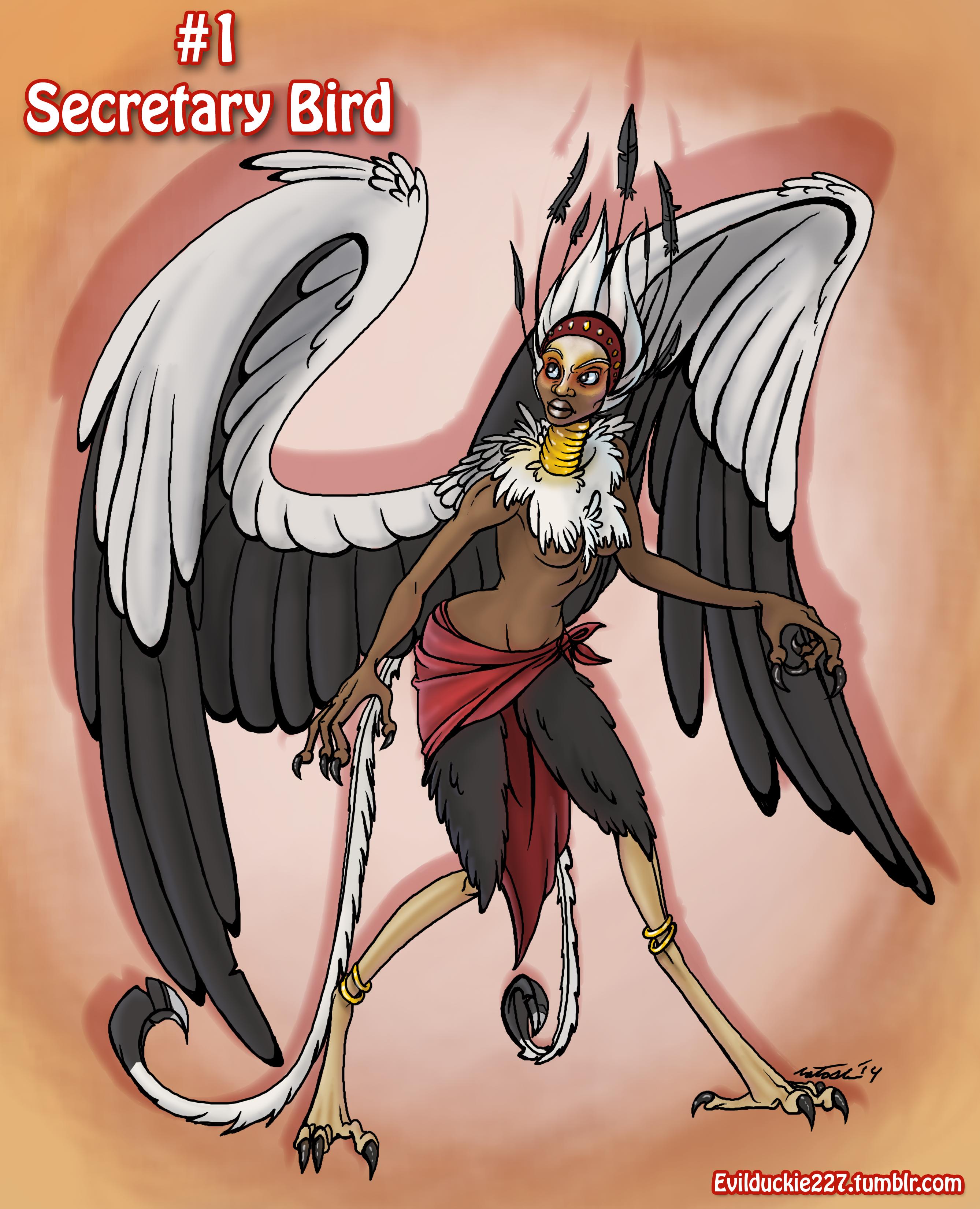 Secretary_Bird_Harpy