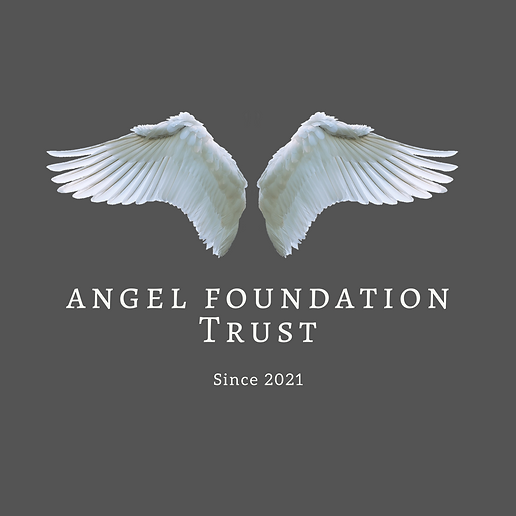 LUXE Digital Now Corporation Angel Found