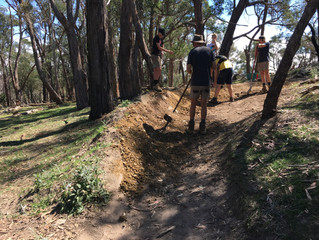 LDTR Trail Build - Sunday 11th November